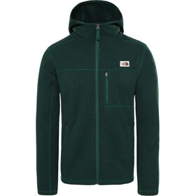 The North Face Gordon Lyons Kurtka z kapturem Mężczyźni, night green heather